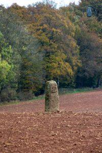 """Menhir """"Langer Stein"""" Mittelbrunn bei Landstuhl"""