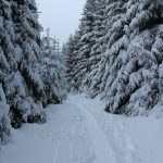Brocken Winterwunderland