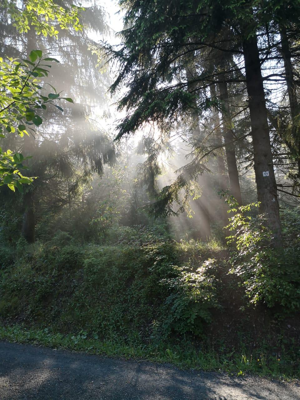 Auf einen Sprung ins Vogtland