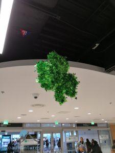 Geocaching Dublin - Alles grün