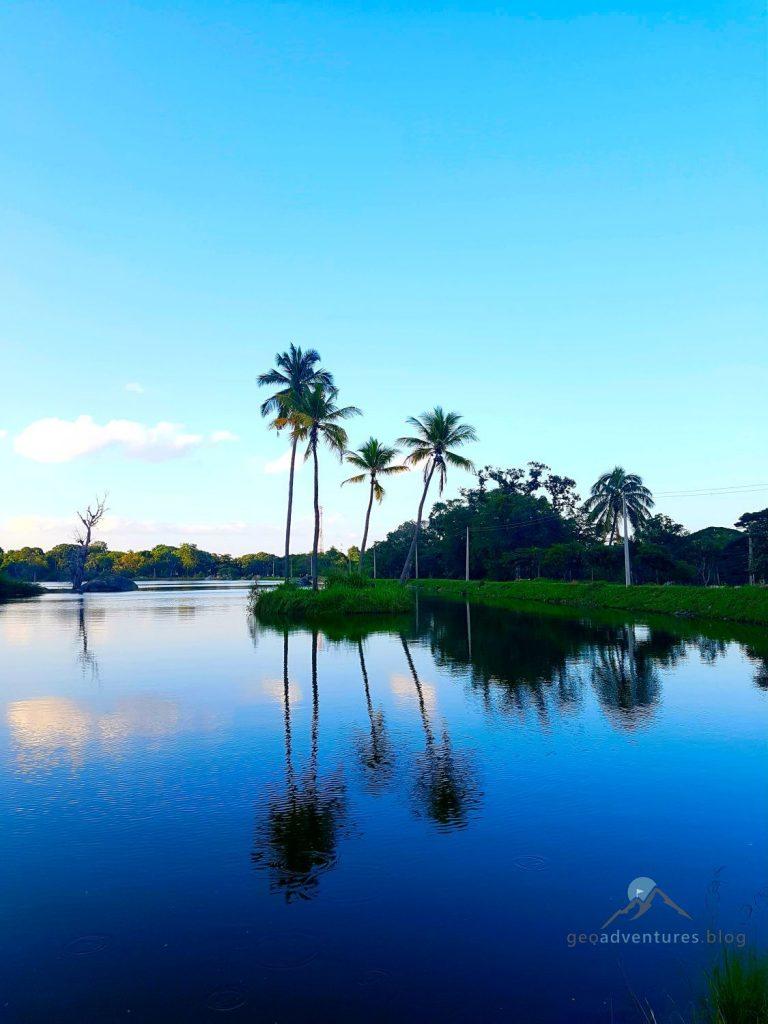 Geocaching Insel Sri Lanka Palmen
