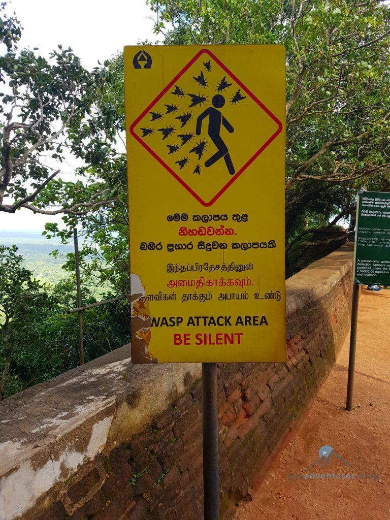 Sigiriya Geocaching Sri Lanka Wespen