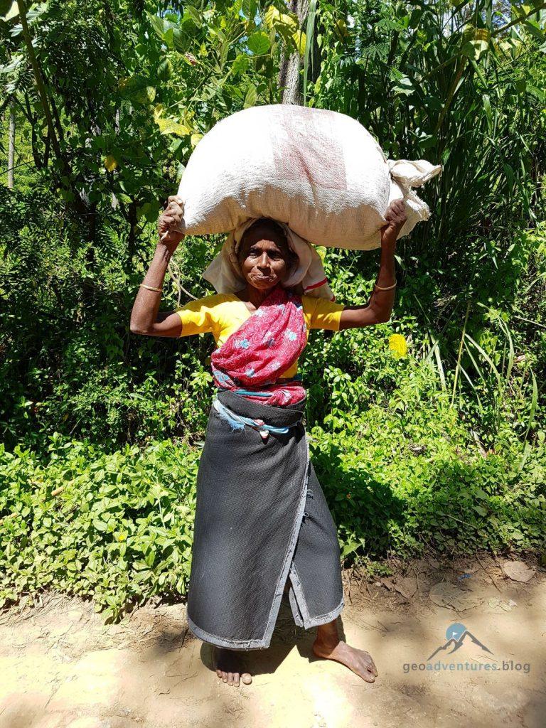 Geocaching Sri Lanka Nuwara Eliya Tee